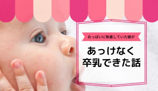 おっぱいに執着していた2歳の娘が、驚くほどあっけなく卒乳した話。